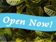 El Dorado Hills Solar Design Center - Open Now!